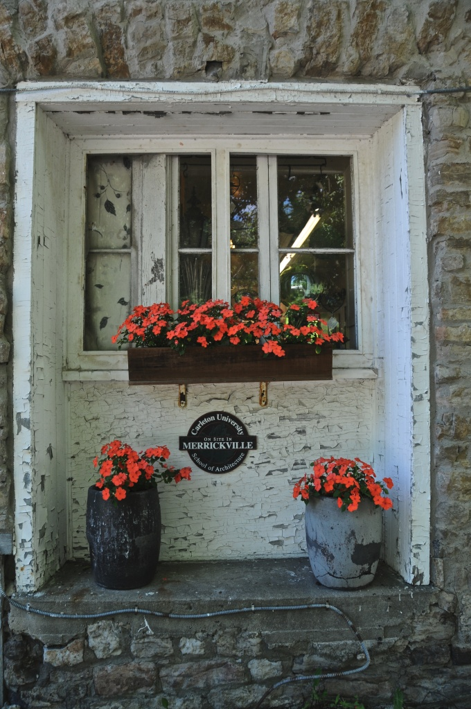 Flowers add a nice touch to a window
