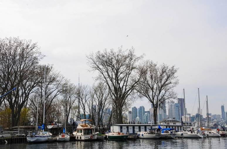 Toronto skyline acts as a backdrop for boats along Algonquin Island