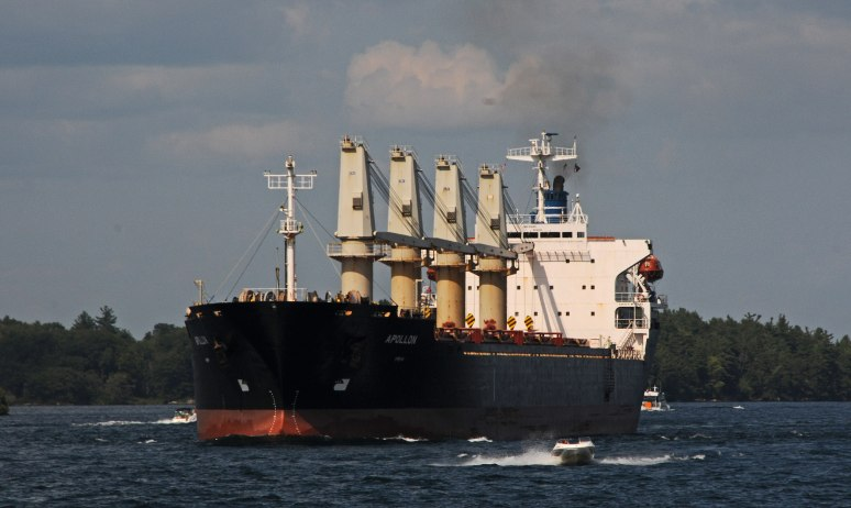 Large tanker ships cruise along with the small boats
